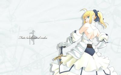 Fate/unlimited codes セイバー・リリィ 1920x1200 壁紙